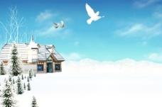 冬天和平鸽外景背景图