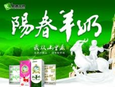 阳春羊奶图片
