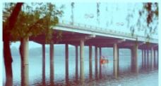 牡丹桥 洛河图片