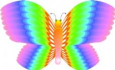 彩虹色蝴蝶