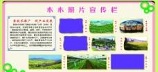 木木市照片宣傳欄圖片