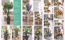 百花园花艺图片