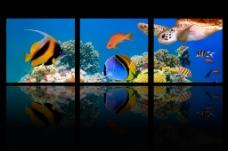 夢幻海底三聯畫圖片
