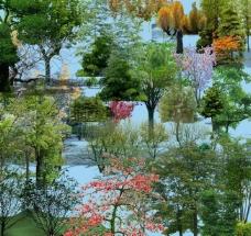园林景观花草树林鸟瞰透视效果图psd分层4图片
